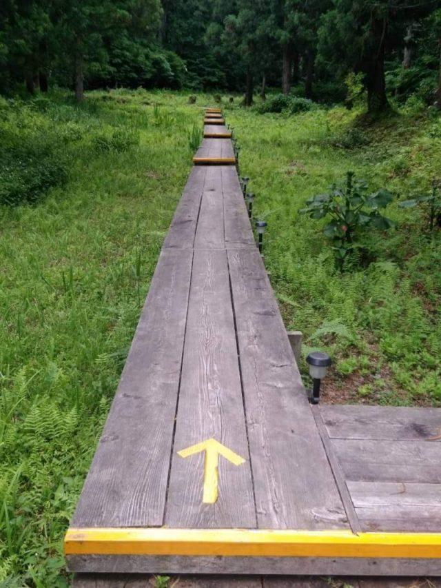 湯沢中里 ホタルの里 散策コース