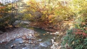 浅貝川の紅葉