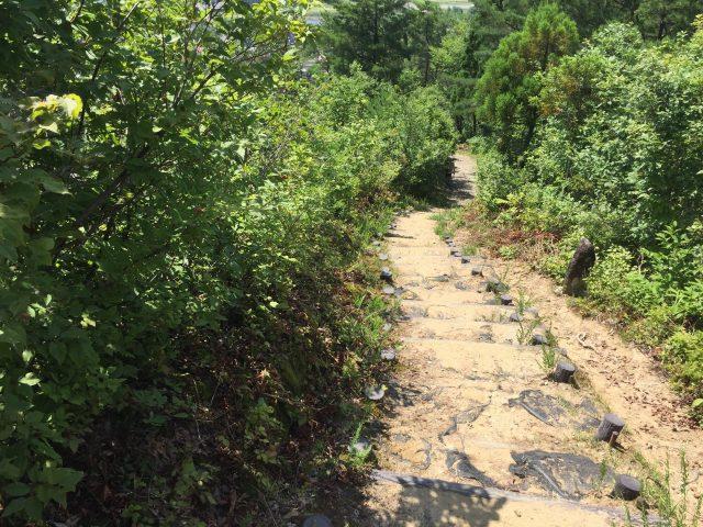 坂戸山 登山道