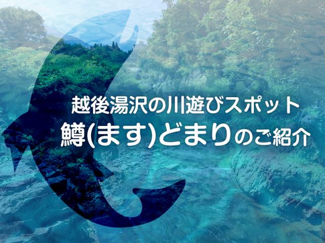 越後湯沢の川遊びスポット:鱒(ます)どまりのご紹介